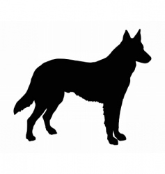 German shepherd dog vector image vector image