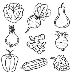 Hand draw doodle vegetable set vector