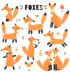 set cute foxes great for children and kids des vector image