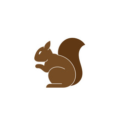 squirrel icon design template isolated vector image