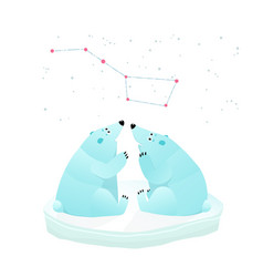 White bears looking constellation of great bear vector