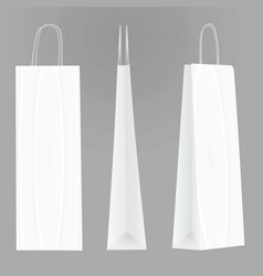 white bottle paper bag template vector image