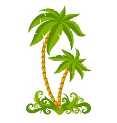 Tropical palms vector image vector image