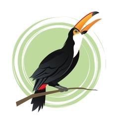 Tuncan bird cartoon design vector image vector image