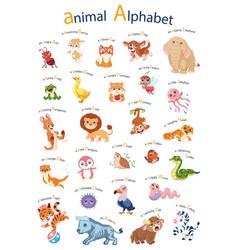 Cartoon english alphabet with animals poster vector