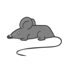 cartoon white mouse color vector image
