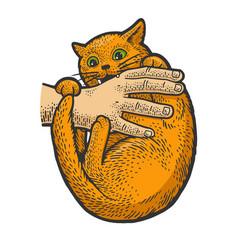 Cat bites hand sketch vector