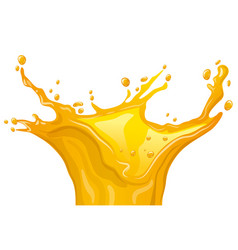citrus juice splash vector image