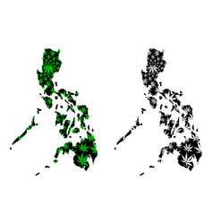 Philippines - map is designed cannabis leaf vector