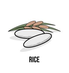 Rice organic product flat natural healthy eco vector
