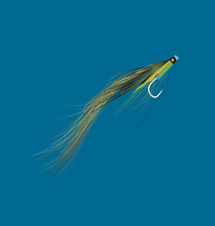sunray shadow tube fly pattern for fly fisherman vector image