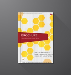 Book cover hex vector image vector image