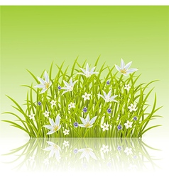 Cartoon of spring grass background vector image vector image