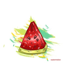 watermelon with colorful splashes vector image