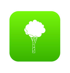 birch icon digital green vector image