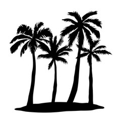 Black single palm tree silhouette icon isolated vector
