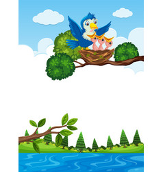chicks in nest on tree branch vector image