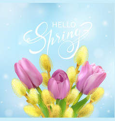 hello spring card with tulips and willow vector image