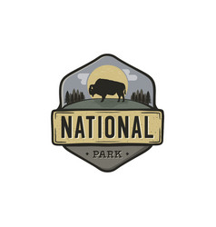 national park vintage badge mountain explorer vector image