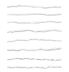 oblong torn white paper strips vector image