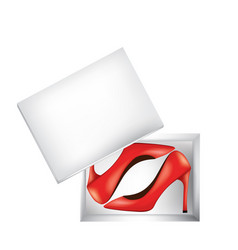 Red women shoes in box vector