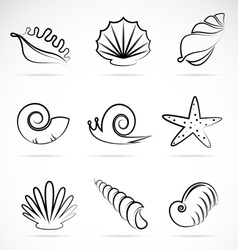 Shellfish vector
