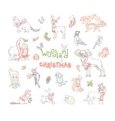 woodland christmas set vector image