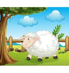 A sheep inside the fence vector image