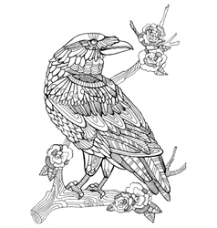 Crow bird coloring book for adults vector