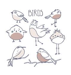 Cute birds in doodle style birding and vector