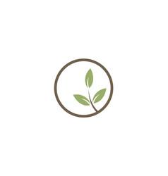 green leaf seed organic logo vector image