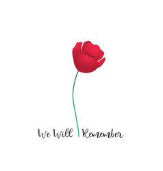 Remembrance day card one red poppy flower vector