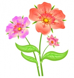 Spring red flowers vector