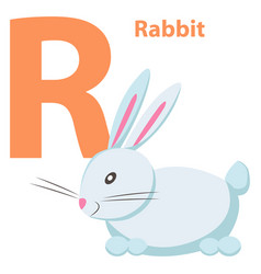 babies english abc letter r with white rabbit flat vector image vector image
