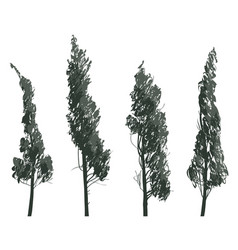 set sketches trees isolated on white background vector image