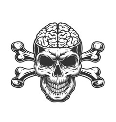 Skull with human brain and crossbones vector