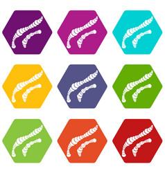 spiral bacteria icon set color hexahedron vector image