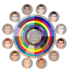Best colors for 12 types male appearance vector