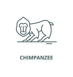 chimpanzee line icon chimpanzee outline vector image