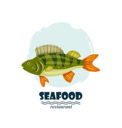 Flat perch seafood restaurant label with splash vector