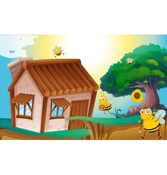 honey bee and house vector image