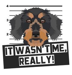 Mugshot mug shot dachshund vector