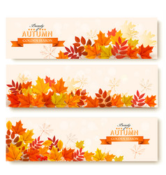 three abstract autumn banners with colorful leaves vector image