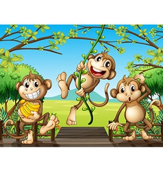 Three monkeys at the wooden bridge vector image