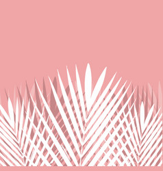tropical palm leaf on pink background vector image