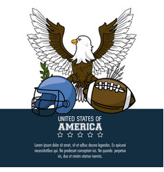 usa american football sport vector image
