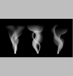 digital white smoke on transparent vector image vector image
