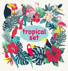 tropical birds palm leaves and flowers vector image vector image