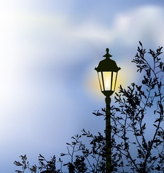 Glowing lantern near branches vector image