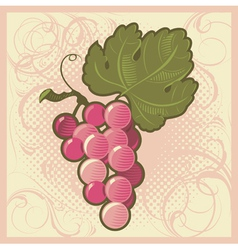 Retro-styled grape bunch vector image